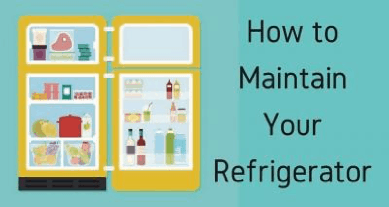 Best Methodologies To Keep Your Refrigerators Organized & Clean 1